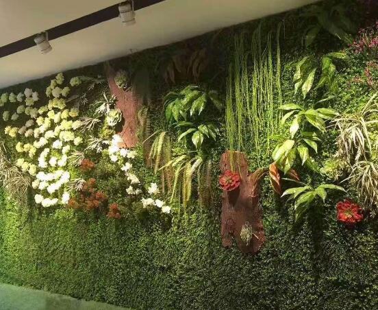 怎样控制植物墙价格