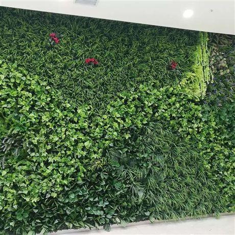 决定垂直绿化是否成功的因素体现在这3个方面