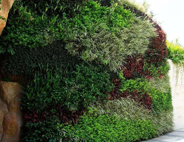 办公室植物墙设计的几个关键环节