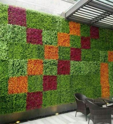 植物墙项目的实施细节很重要