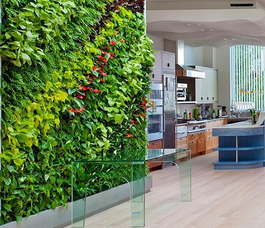 植物墙在色彩方面该怎样运用