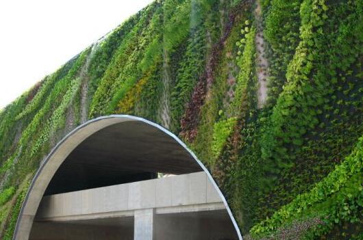 仿真植物会不会对环境有影响