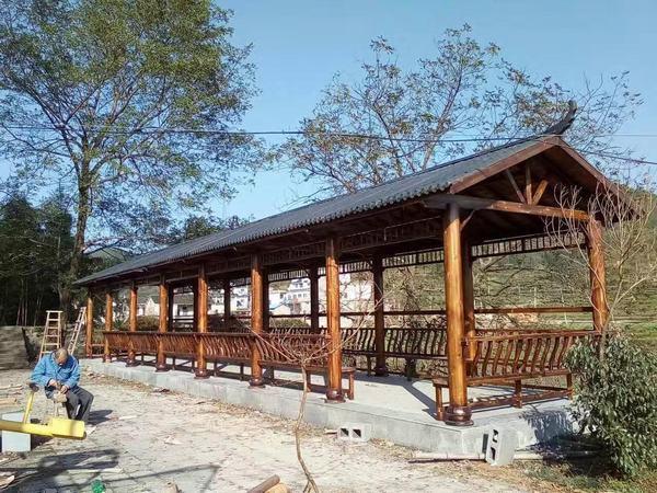 炭化木长廊3