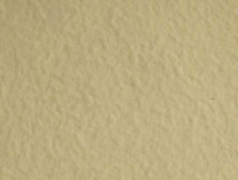 弹性外墙漆