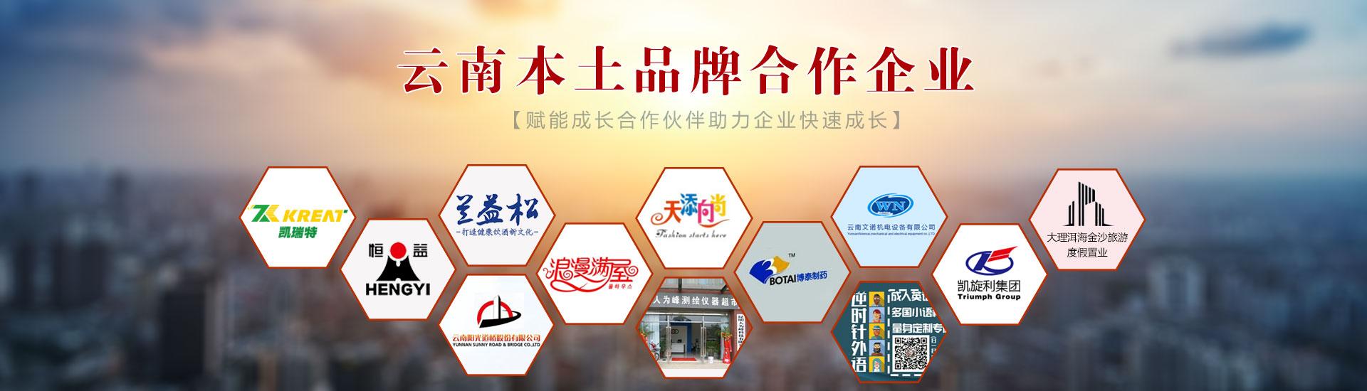 亚游国际游戏集团谘詢管理