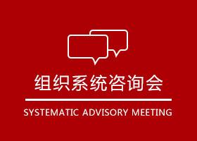 组织系统咨询会