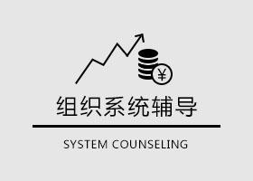 组织系统辅导