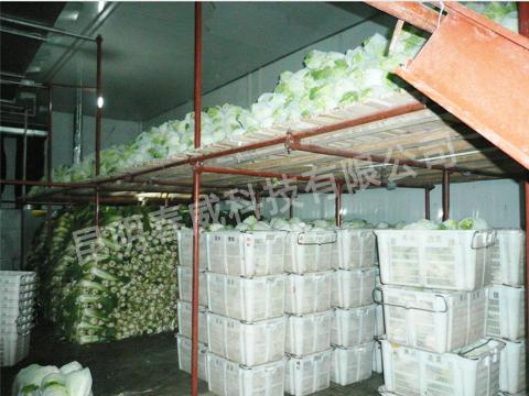 小型蔬菜冷库