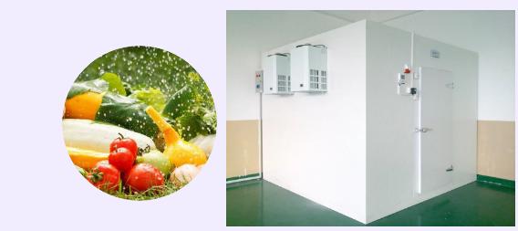 蔬菜冷库保温「各类蔬菜保鲜冷库的适宜温度」