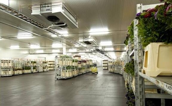 水果冷库,如何做好低成本预算?
