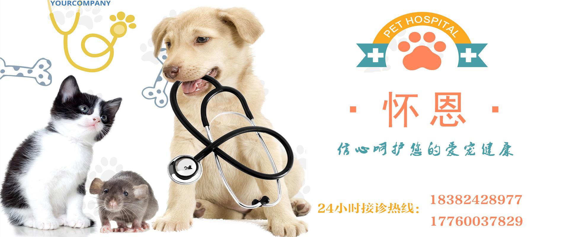 眉山宠物医院(怀恩动物医院)24小时接诊!
