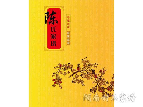 陈氏家谱封面设计样式