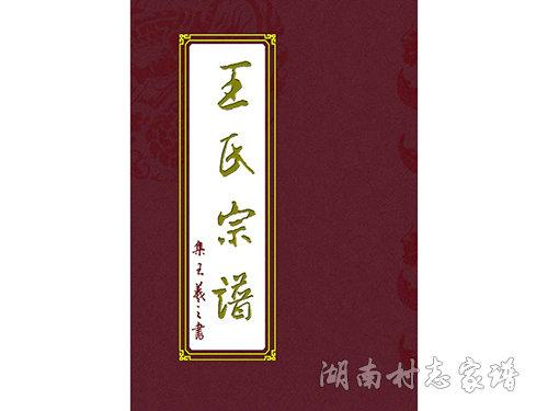 王石宗谱封面设计稿