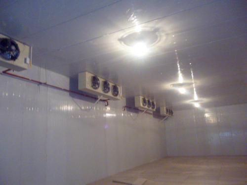 大型食品冷藏库
