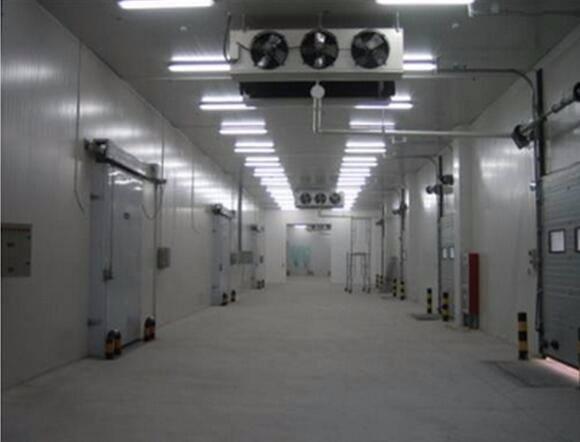 速冻冷库设计和冷冻冷库设计的区别