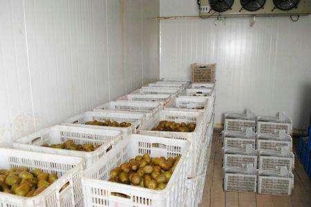 移动水果冷库