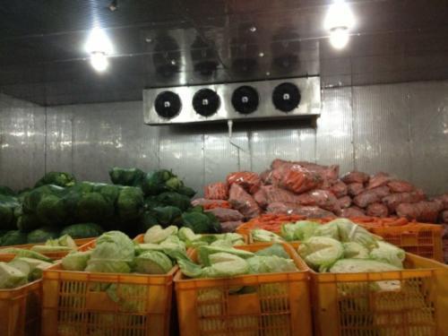 水果蔬菜冷库成本预算是多少?
