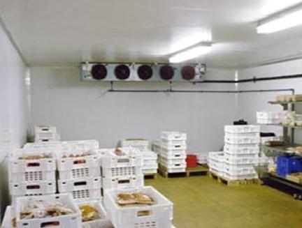 蔬菜保鲜和冷藏技术以及作用机理