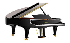 钢琴的清洁保养需要注意什么?沈阳钢琴培训班告诉你