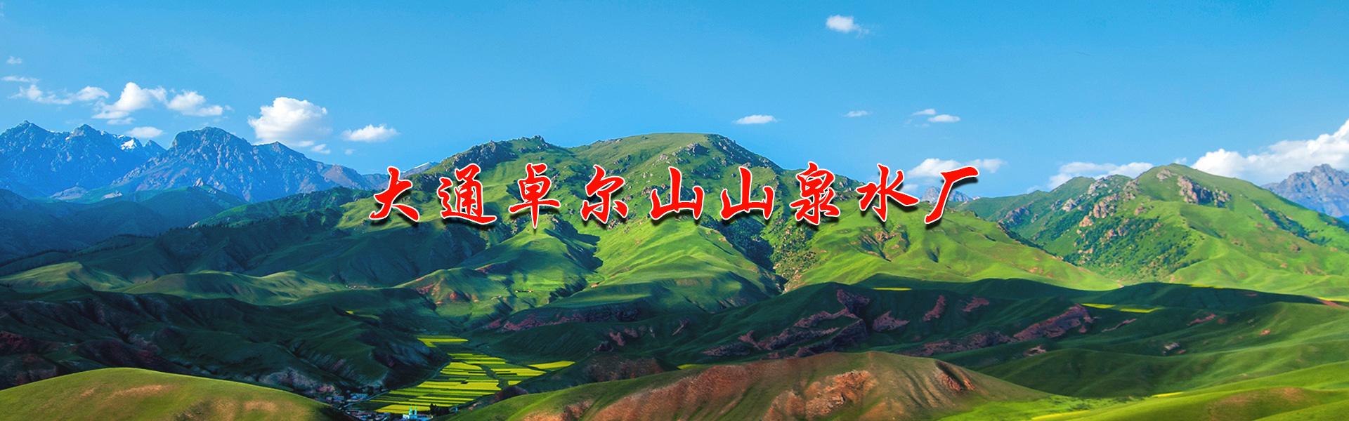 大通卓尔山山泉水厂