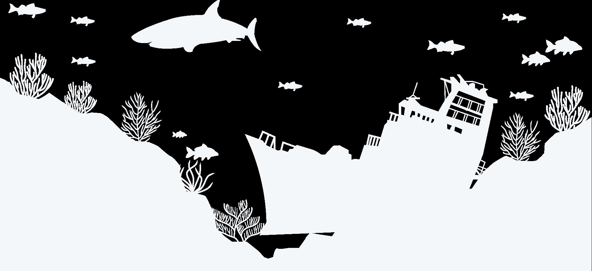 山西美人鱼潜水