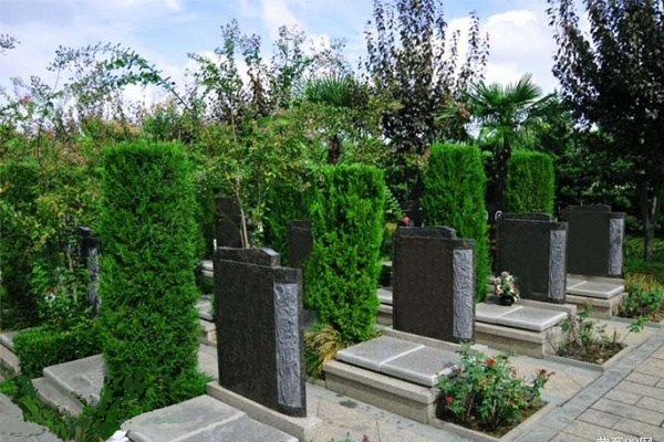 重庆公墓网站优化续2年