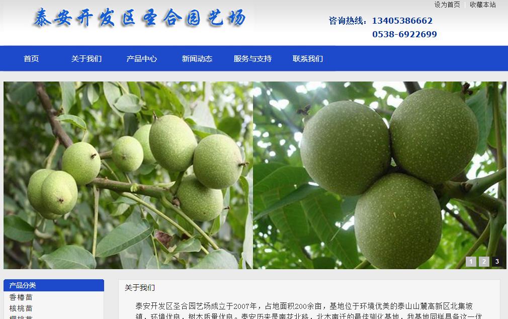 塘沽濮阳漳州网站建设之泰安果树苗种植基地网站