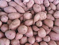 吃红薯对人的身体有哪些好处?