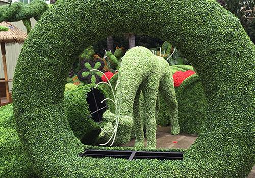 東莞綠雕告訴你綠雕是用怎么植物做成的,看以下幾點