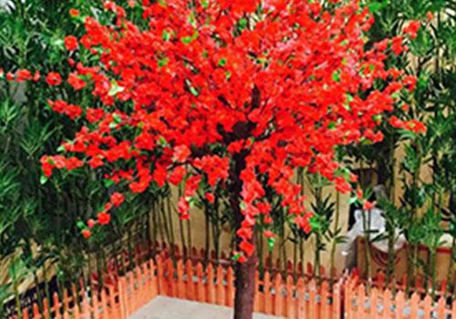 仿真枫树为什么能够蔚然成风?