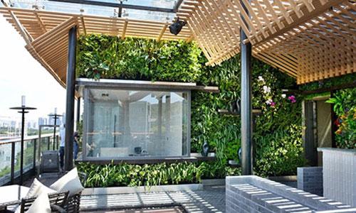 东莞庭院景观设计