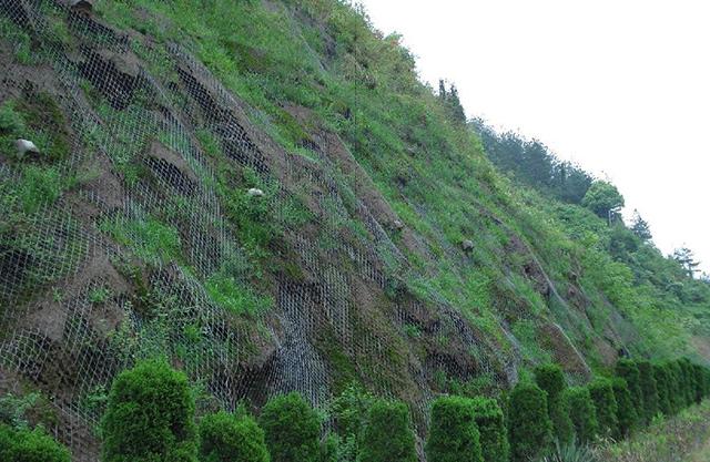 都匀山体绿化喷播挂网