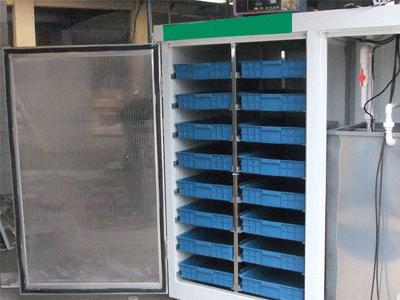全自动豆芽机