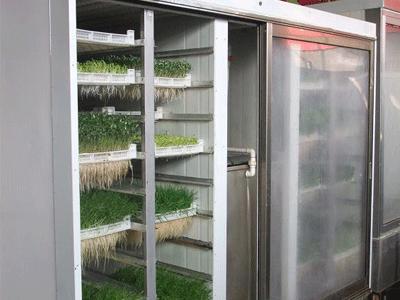 全自动芽苗菜机