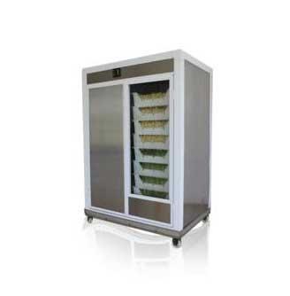 用豆芽机生产的豆芽做干煸豆芽菜