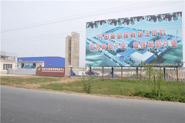 陕西兴田现代农业投资发展公司水果保鲜物流冷库建造