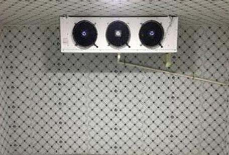 保鲜冷库的关键技术就是为其保鲜