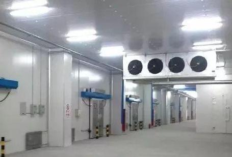 保鲜冷库不要建在地下的原因有哪些?