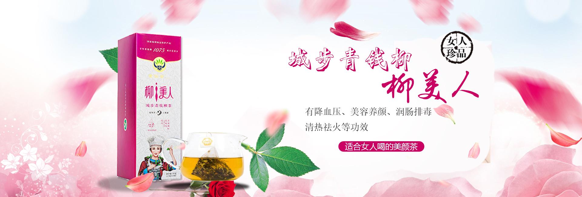 城步青钱柳·柳美人