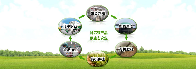 中国生态种养殖物联网