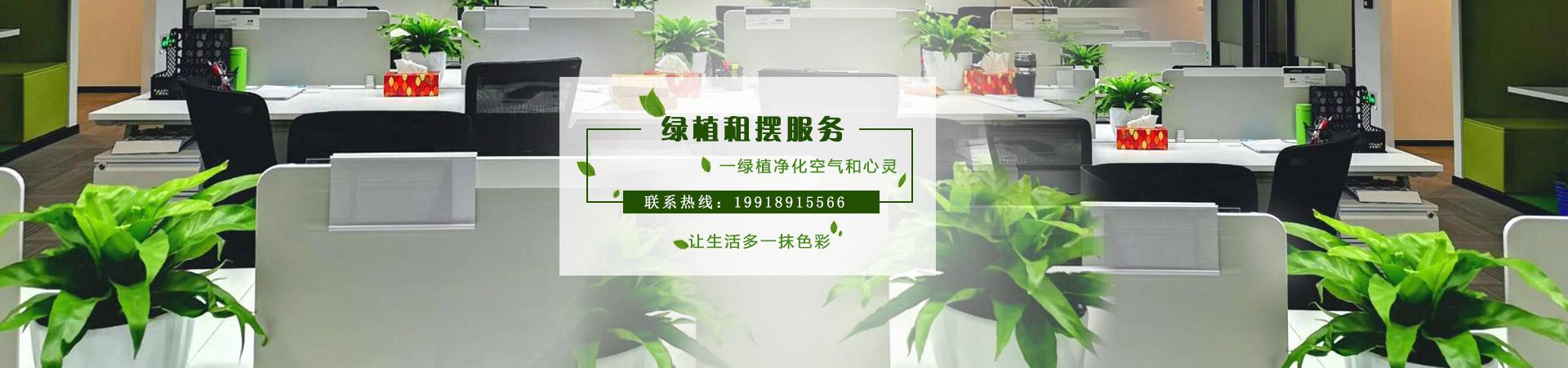 貴陽植物租賃