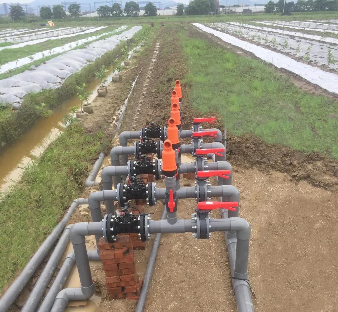 滴灌技术的优缺点有哪些