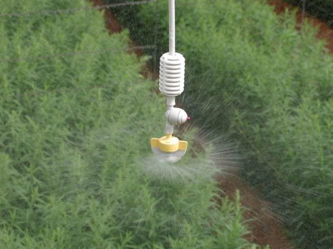 福建造雾加湿系统