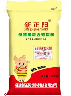 后備母豬(HB4816)