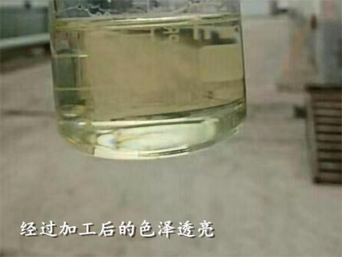 四川動物油設備價格