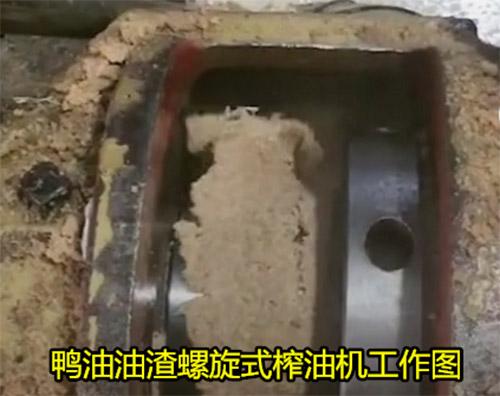 江苏鸡鸭油熬炼设备
