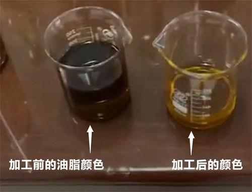 动物油炼油设备价格