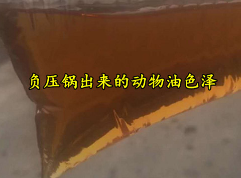 猪油精炼油设备