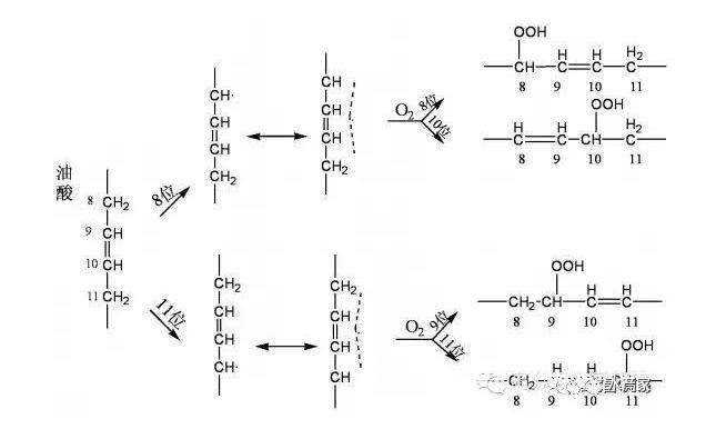 植物油分为几种氧化方式