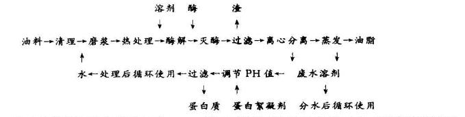 溶剂-水相酶解预处理取油工艺